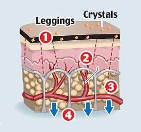 Skin under Bio-Fir Anti-Cellulite treatment